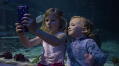 Little Girl Takes A Video With Aquarium Fish, Brother Wants It, Shakes Him Off Stock Footage