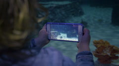 Little Boy Takes A Video, With Smartphone, Of Shark Swimming in Aquarium Tank Stock Footage