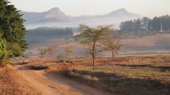In swaziland  wildlife  nature  reserve mountain and tree Stock Footage