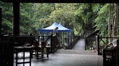 Tabin Wildlife Resort, Lodge, Borneo Stock Footage