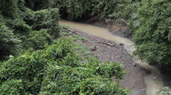 Small river in the rainforest, filming from canopy trail Stock Footage
