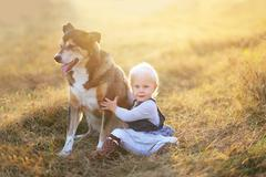 Happy Baby Girl Sitting in Field With Adopted German Shepherd Pet Dog Stock Photos