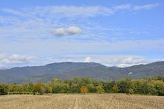 Autumnal Field Stock Photos