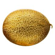 Melon isolated on white background. With clipping path Stock Photos