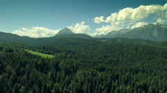 Horizon mountains evergreen trees lush green forest landscape clouds blue sky Stock Footage