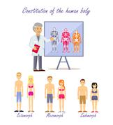Constitution of the Human Body Types Stock Illustration