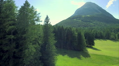 Beautiful meadow evergreen forest green grass mountain blue sky sunny aerial Stock Footage