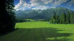 Beautiful idyllic nature green grassland pasture scenery meadow forest blue sky Stock Footage
