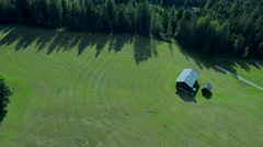Green grass remote nature meadow evergreen forest landscape aerial drone motion Stock Footage
