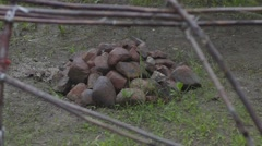 Stones in traditional sweat lodge Stock Footage