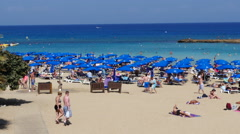 Famous Fig Tree bay beach Stock Footage
