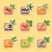 Jam Label Sticker Collection Of Templates In Square Frames Stock Illustration