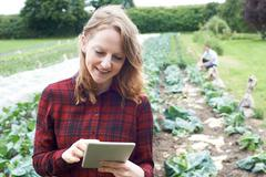 Female Agricultural Worker Using Digital Tablet In Field Stock Photos