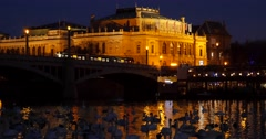 White swans and ducks swimming in Vltava river over The Rudolfinum Stock Footage