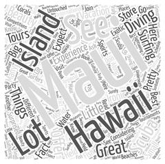 What To Expect At A Maui Hawaii Vacation word cloud concept Stock Illustration