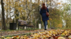 The silhouette of a woman in the autumn Park.A walk in the Park. Stock Footage