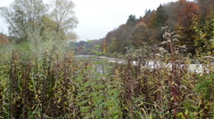 Isar river next to Pullach in Bavaria. Near Munich. (Germany) Stock Footage