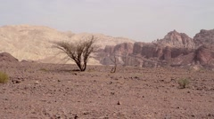Eilat Mountains view Stock Footage