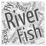 Texas Fly Fishing word cloud concept Stock Illustration