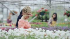 4K Customers shopping in garden center & friendly worker offering advice Stock Footage