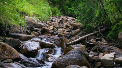 Forest stream with stones time lapse Stock Footage