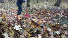 Woman in yellow boots raking fall leaves with red rake in garden. 4K Stock Footage