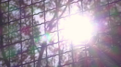 Bright sunshine light coming through trees and metal fence 4k Stock Footage