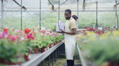 4K Cheerful worker in garden center greenhouse watering rows of plants Stock Footage