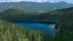 Aerial - Beautiful lake of deep blue color surrounded by lush spruce forest Stock Footage