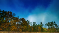 Autumnal forest and moving clouds on blue sky Stock Footage