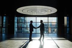 Two entrepreneurs handshaking in office center against window with sunlight pene Stock Photos