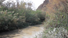 Staedy shot of Jordan River Israel Stock Footage