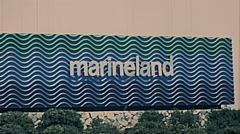 Los Angeles 1977:  Marineland of the Pacific sign Stock Footage
