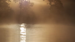 Golden morning reflection on water Stock Footage