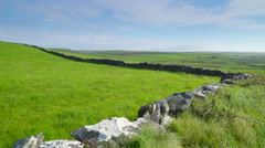 The green farm land in Ireland Stock Footage
