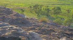 Rack Focus between Rock and Pandanus at Ubirr in Kakadu, Australia Stock Footage