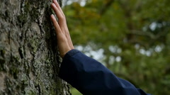 Female hand touching tree bark Stock Footage