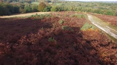 Aerial views of Ashdown Forest Stock Footage
