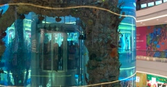 Giant panoramic aquarium with a built-in Elevator, shopping Mall Stock Footage