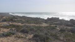 Atlantic Coastal semidesert Stock Footage