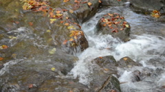 Autumn time in Maisinger Schlucht Canyon in Bavaria (Germany) Stock Footage