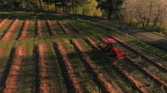 Aerial view of tractor on farm driving down rows Stock Footage