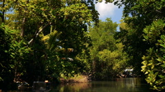 Kalu Ganga river in Sri Lanka, travelling by boat Stock Footage
