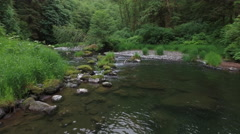 Flying up a creek in Oregon, USA Stock Footage