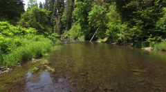 Aerial view of creek in Oregon, USA Stock Footage