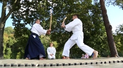 Demonstrations of martial arts at martial arts festival in Feofania park in Kiev Stock Footage