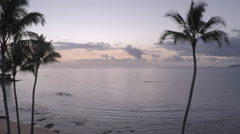 Drone aerial of dawn at Kualoa and Mokolii Island with Palm tree silhouettes Stock Footage