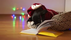 Merry Christmas, Clever dog wearing glasses and reindeer costume, reading the Stock Footage