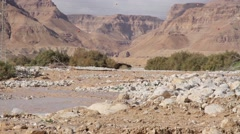 Flash flood in the Desert Stock Footage