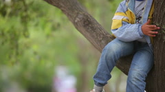 Cheerful little boy sits on a tree Stock Footage